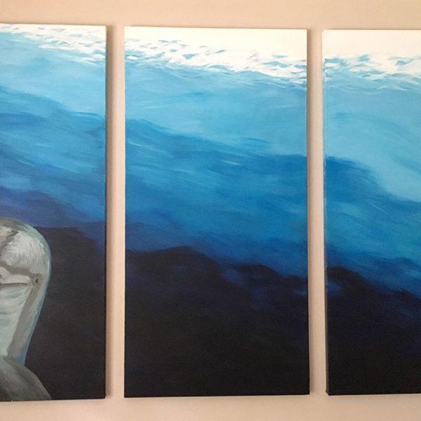 Dolphin Hello Triptych